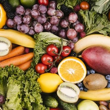 ¿ Cuál es la importancia de una buena alimentación ?